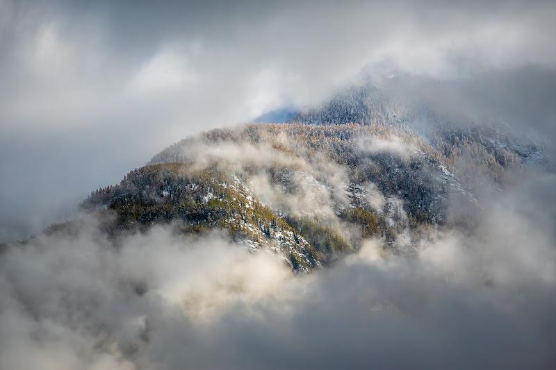Bosco fra le nubi di matteoaosta