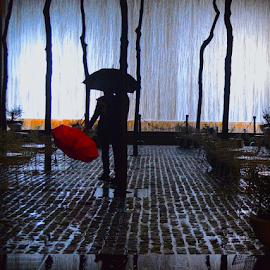 Wet Love by Rob Kovacs - City,  Street & Park  Street Scenes (  )