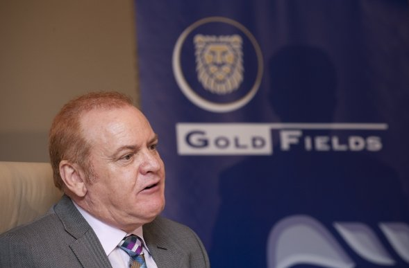 Gold Fields CEO Nick Holland. Picture: MARTIN RHODES