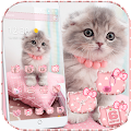 Pink Cute Kitty Cat Theme download