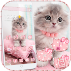 Mignon minou chat theme Cute Kitty Cat icon