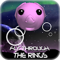 Fly Through The Rings icon