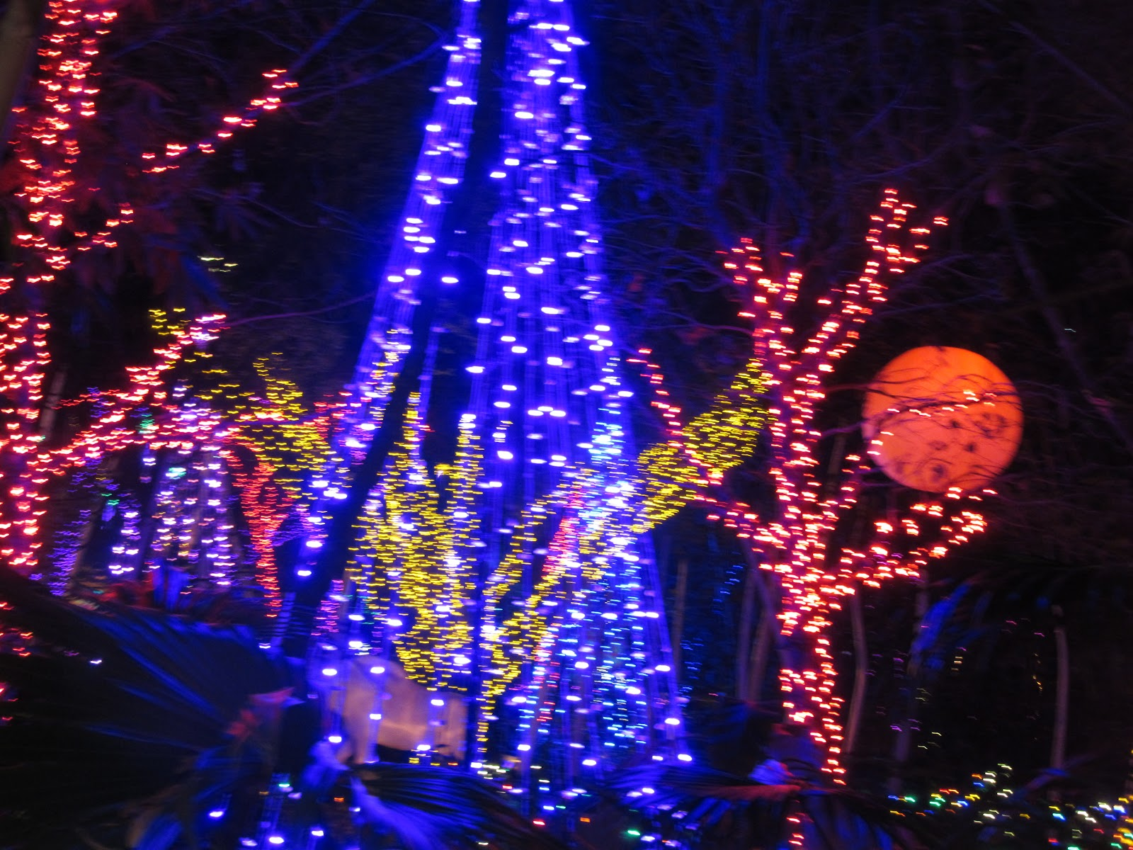 The Katy Texas Blog Almost Wordless Wednesday Zoo Lights at