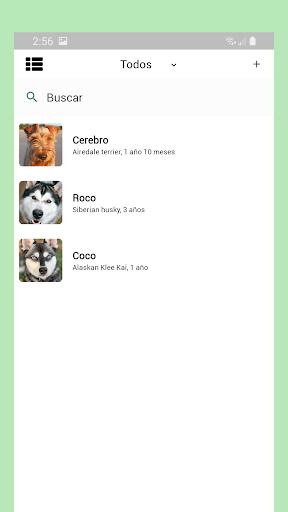 Bindo screenshot 2
