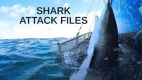 Shark Attack Files thumbnail
