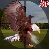 Hunting Birds 2014