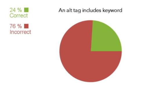 24% website ảnh có chứa thẻ alt nhưng không chứa từ khóa