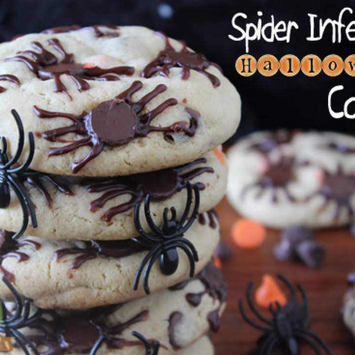 Spider Infested Halloween Cookies