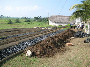 Photo: Sustainable Sugarcane Initiative (Sistema de Caña de Azúcar Sostenible - SiCAS) [Photo by Rena Perez]