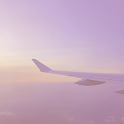 [메리골드] 여행 카톡 테마 icon