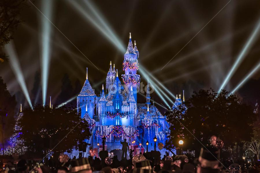 New Year Disney by Darren Sutherland - Public Holidays New Year's Eve ( 2017, trip, disney 2017 )