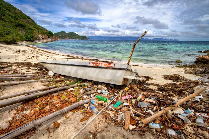Photo: Paradise Defiled