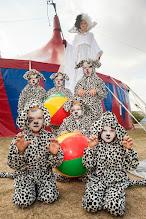 Photo: Cirkus Flik Flak. Sted: Heruf Trolles Vej 138, 5220 Odense SØ. Dato: 02/08/14 Journalist:  Foto: Alex Tran