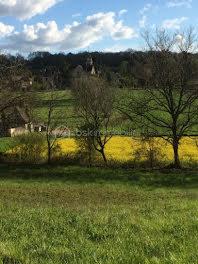 terrain à Le Buisson-de-Cadouin (24)