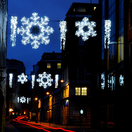 Chancery Lane Snowflakes by DJ Cockburn - Public Holidays Christmas ( london, britain, city, dusk, winter, long exposure, southampton buildings, holiday, twilight, building, road, uk, street, cityscape, holborn, decoration, blue hour, architecture, light trail, england, chancery lane, snowflake, electric light, illumination, festival, festive, night, christmas, urban, evening )
