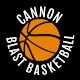 Cannon Blast Basketball Android apk