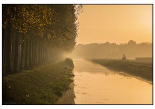 Photo: Nederland - natuur Foto Bert Morsink