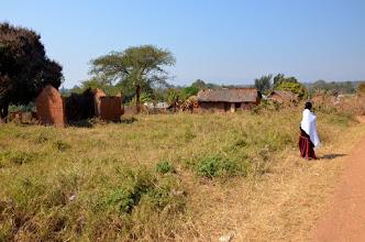 Photo: Možný site 2016 Mbugi.