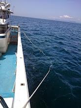 """Photo: 船を横に張って。 専用の器具、いい感じですよ、""""馬場さん""""!"""