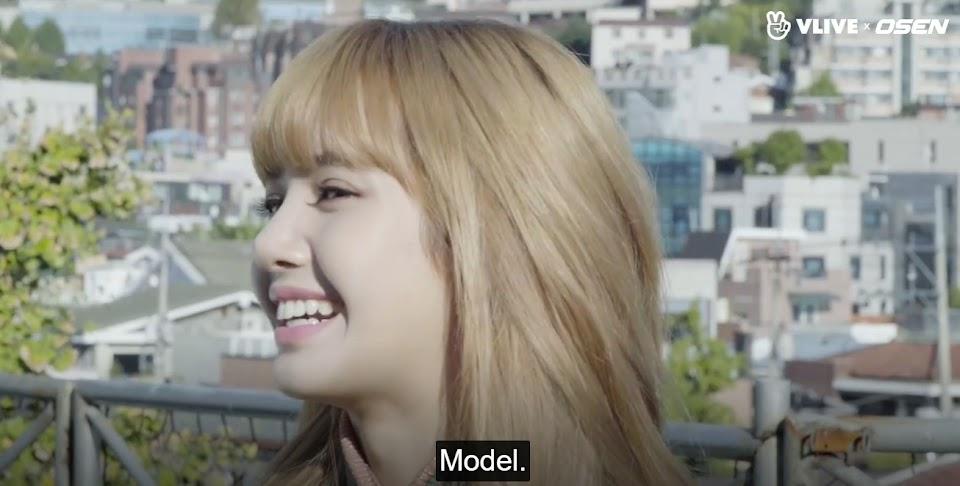 lisa model