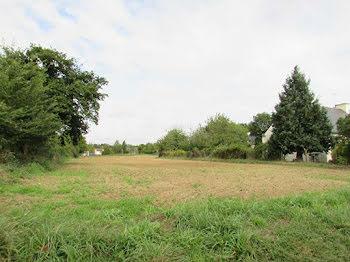 terrain à Saint-Léry (56)