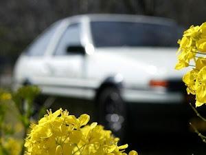 スプリンタートレノ AE86 GT-APEXのカスタム事例画像 イチDさんの2020年03月21日20:40の投稿