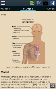 History of Marijuana - náhled