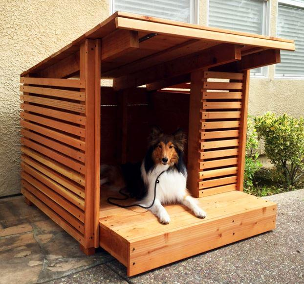 Dog House Design- screenshot
