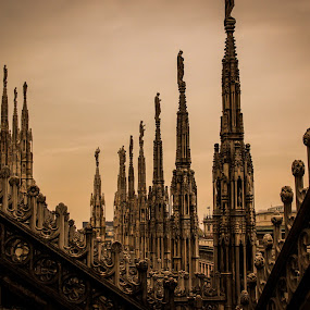The Duomo's Crown by Joey - Buildings & Architecture Architectural Detail ( milan italy duomo architecture details pinnacles cathedral amazing gothic detail ornate pwcdetails churches tourist landmarks )