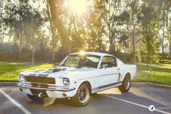 1965 Ford Mustang Fastback / Andre Hire CA