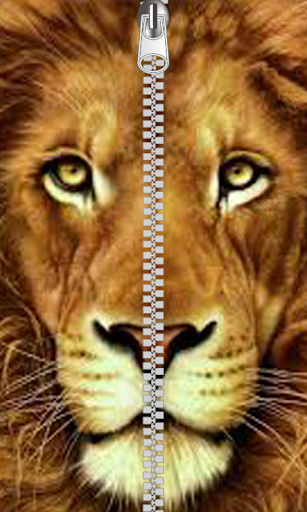 Lion Huge Zipper Lock Screen