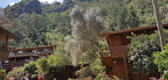 Turkmen Tree Houses