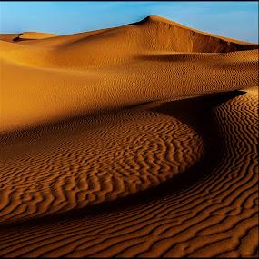 Golden Dunes by Damjan Voglar - Landscapes Travel