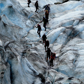 Ice Climbing by Perla Tortosa - Landscapes Travel ( glacier, climbing, danger, ice, people,  )
