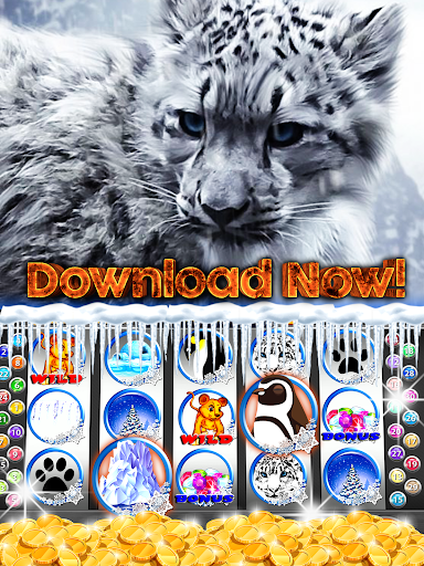 免費下載博奕APP|Wild Snow Leopard Slots app開箱文|APP開箱王