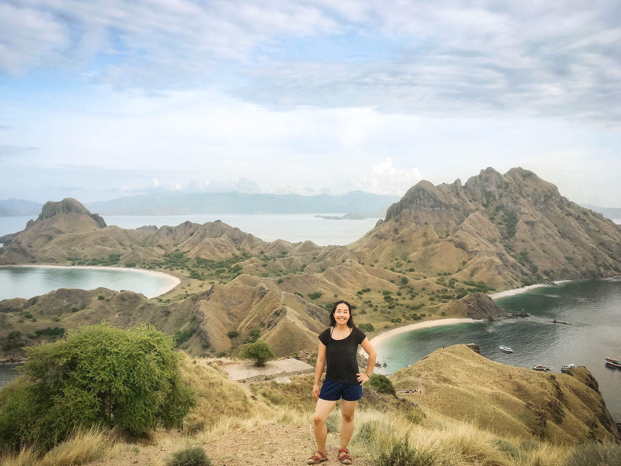 Insta-famous view of Padar Island, Indonesia. It was a sweaty uphill hike, but even after seeing this view on the Internet, it still blew my mind.