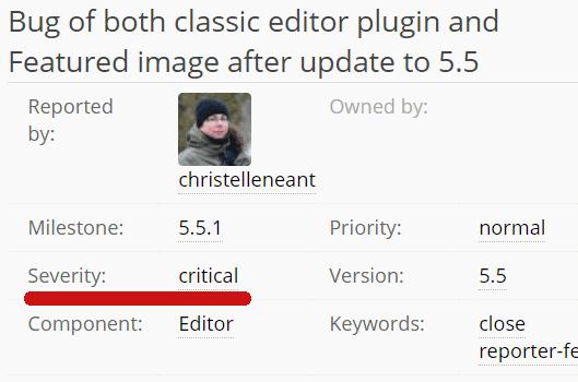 Screenshot of a critical WordPress 5.5 bug report