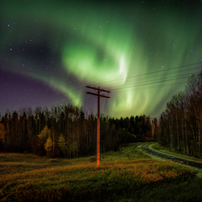 Electric Swirl by Charles Adam - Landscapes Starscapes ( pines, aurora, aurora borealis, northern lights, track, landscape, northern, field, poll, autumn, train, trees, night, telephone )