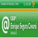 Colegio Enrique Segura Covarsí icon