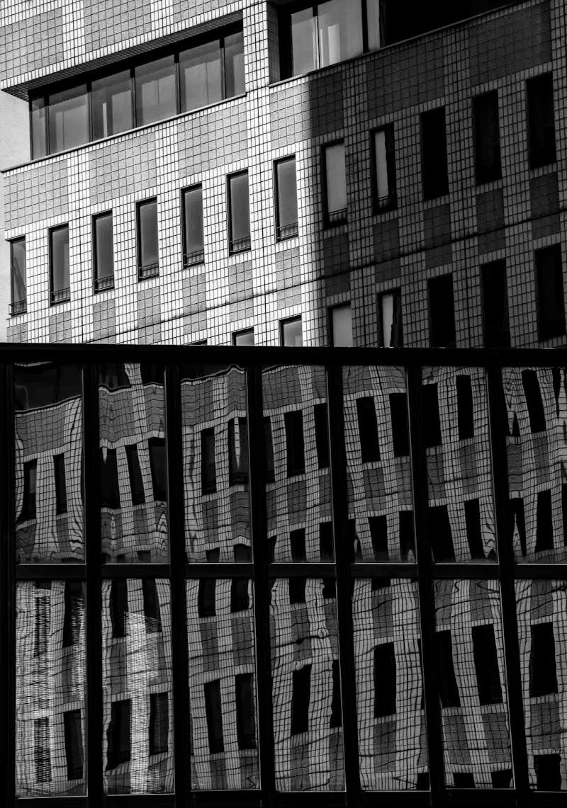 trasparenze o riflessi..... di Fabry
