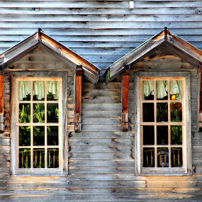 Windows of the MIll by Freda Nichols - Buildings & Architecture Architectural Detail ( two, mill, reflection, old, windows, buiding, time scars, , vertical lines, pwc )