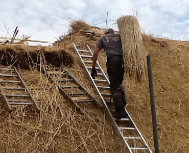man using hay to build roof