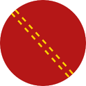 Duckworth-Lewis calculator icon