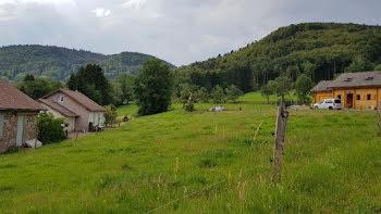 terrain à Le Val-d'Ajol (88)