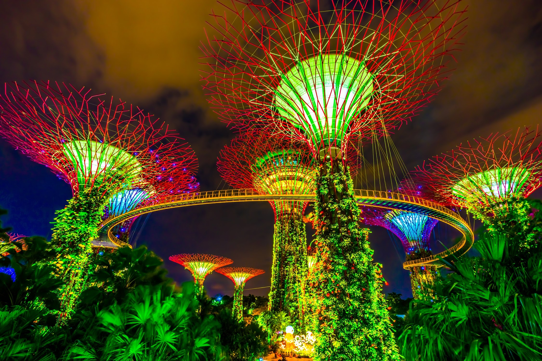 Gardens by the Bay night view3