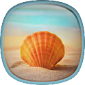 Sea Shell Live Wallpaper HD icon