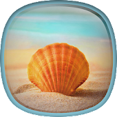Sea Shell Live Wallpaper HD