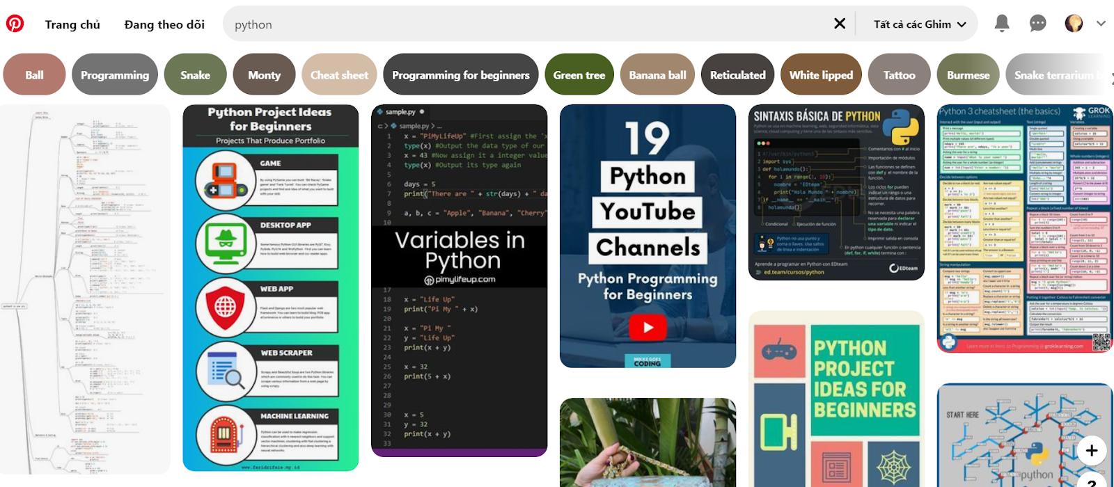 Áp dụng phần mềm lập trình Python và PInterest