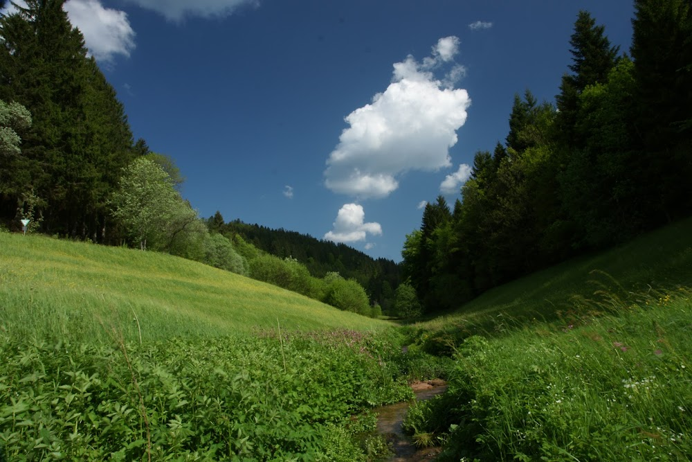 Grüner Süden