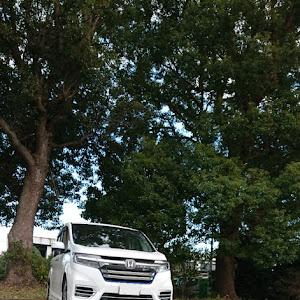 ステップワゴンスパーダ RP5 HYBRID G-EXのカスタム事例画像 リオンさんの2018年11月03日08:40の投稿